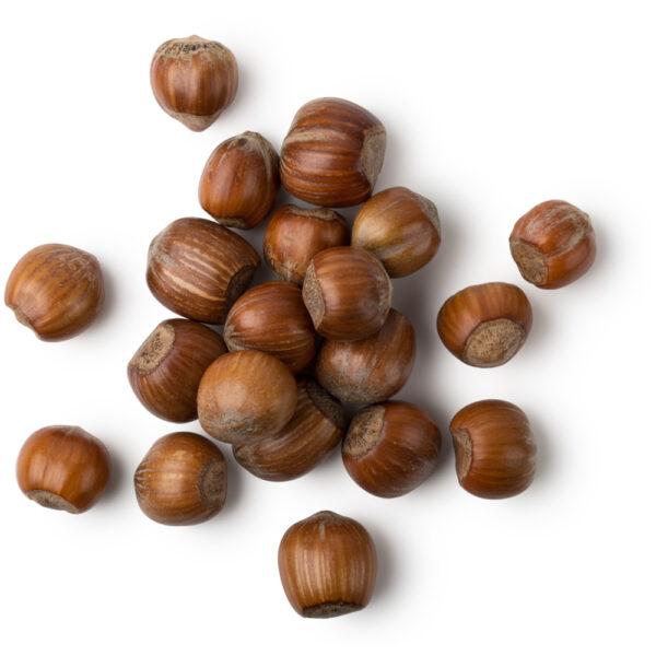 Sarapuupähkliõli 100 ml- 250 ml