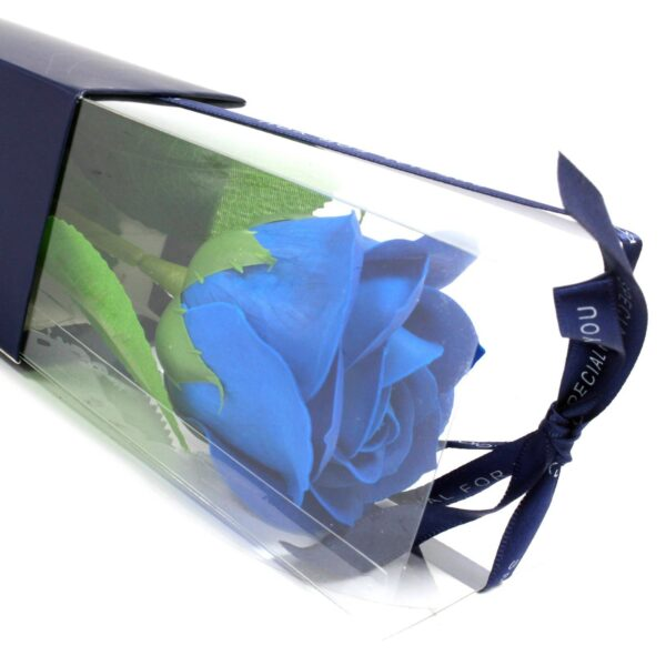 Üksik roos kinkekabis (sinine)