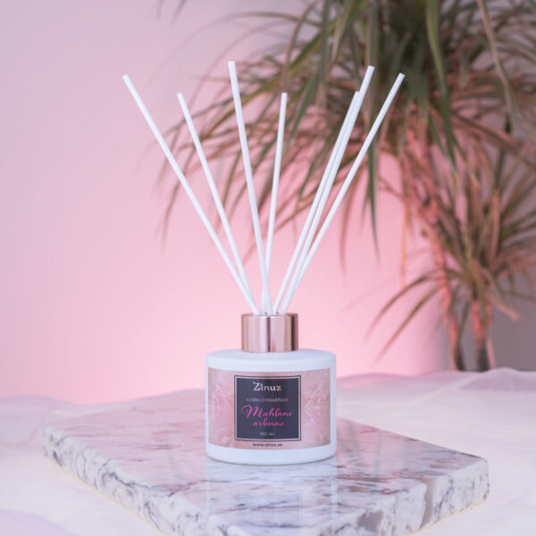 Kodulõhnastaja Mahlane arbuus