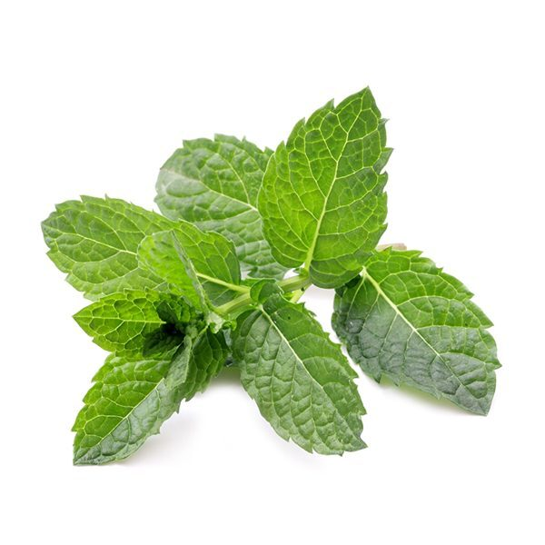 Aroomõli Mint 20 ml-500 ml